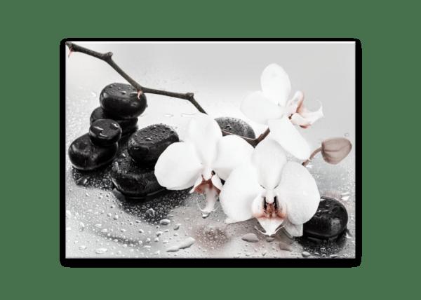 Glasbild Pastel Orchids