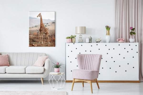 Leinwandbild Giraffe im Wohnzimmer