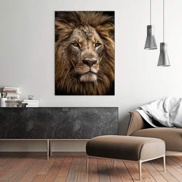 Leinwandbild Majestic Lion im Wohnzimmer