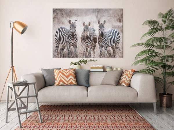 Leinwandbild Zebras im Wohnzimmer