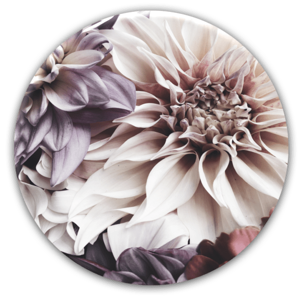 Glasbild Dhalia – rund