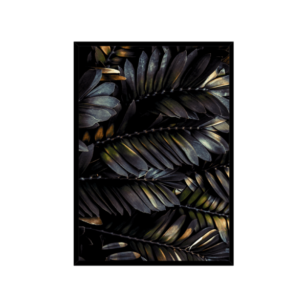 Rahmenbild Feather