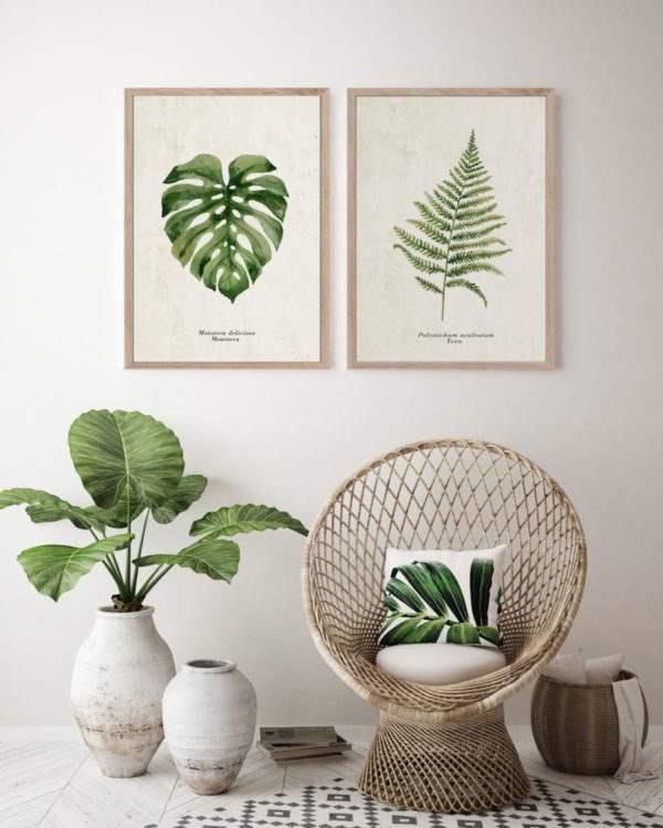 Rahmenbild Fern im Wohnzimmer