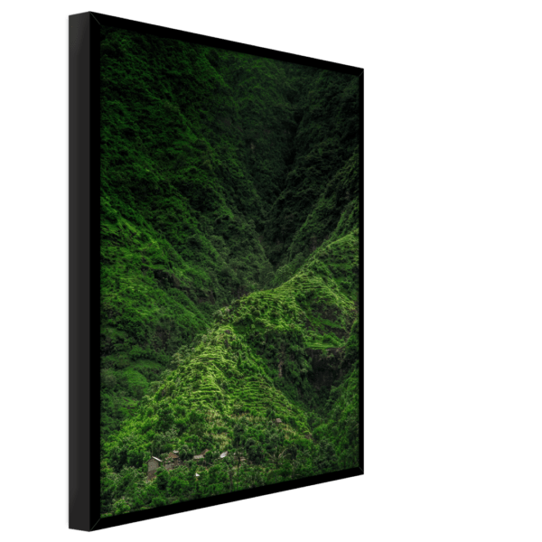 Rahmenbild Jungle Ansicht schräg