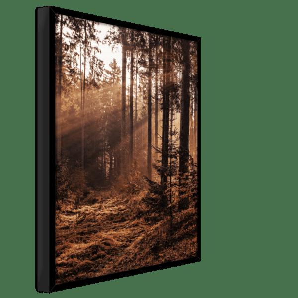Rahmenbild Forest Ansicht schräg