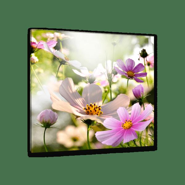 Glasbild Frühlingserwachen Ansicht schräg