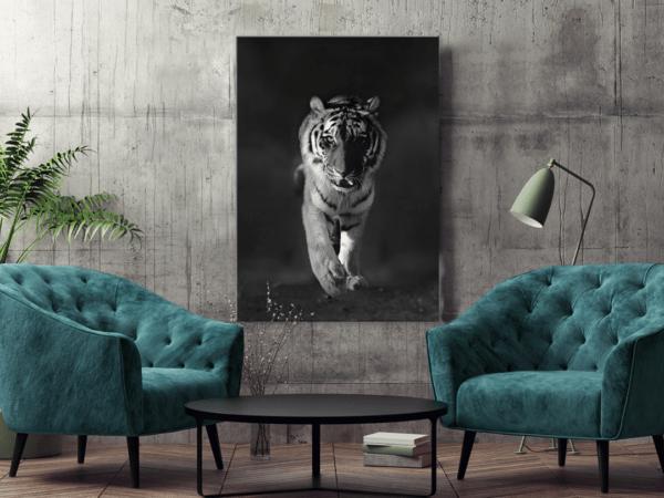 Glasbild Tiger im Wohnzimmer