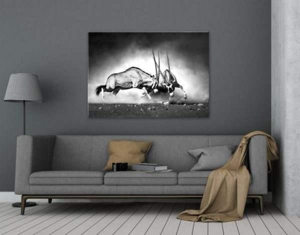 Glasbild Gazelle im Wohnzimmer