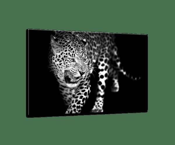 Glasbild Leopard Ansicht schräg