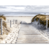 Glasbild Dünenpfad ans Meer