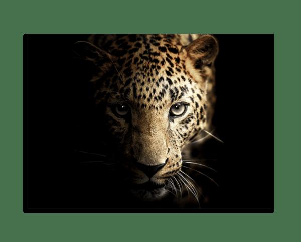 Glasbild Majestic Leopard