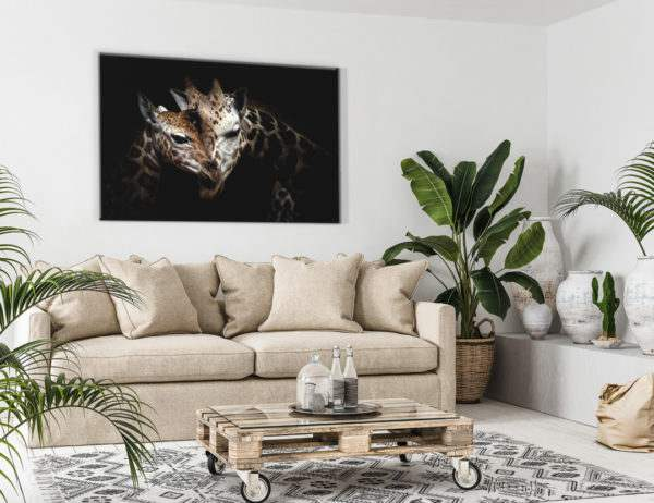 Glasbild Giraffes Love im Wohnzimmer