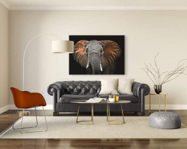 Glasbild Red Elephant im Wohnzimmer