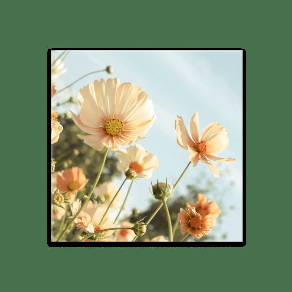 Glasbild Sommergefühle