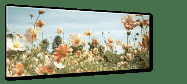 Glasbild Blumentraum Ansicht schräg