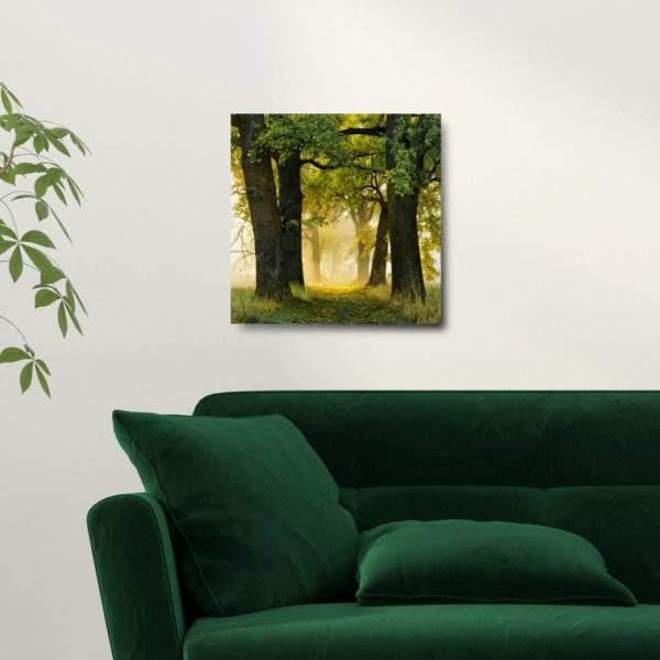 Glasbild Trees im Wohnzimmer