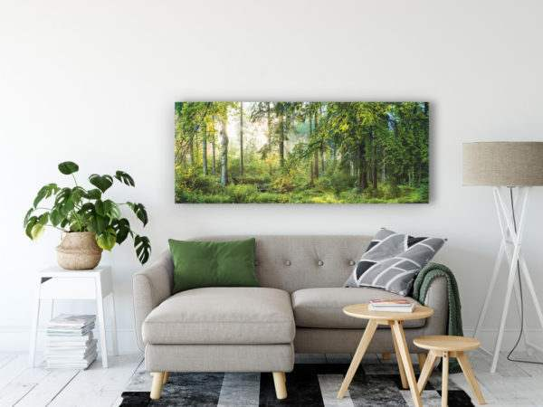 Glasbild Forest im Wohnzimmer