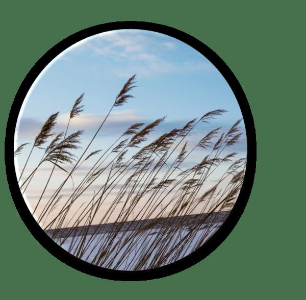 Glasbild Wind – rund