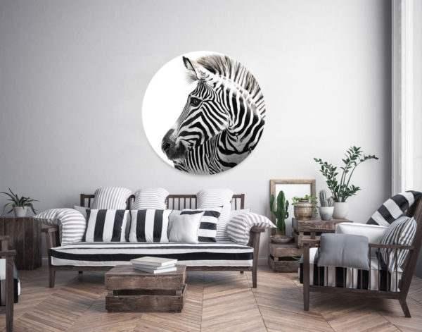 Glasbild Zebra – rund im Wohnzimmer
