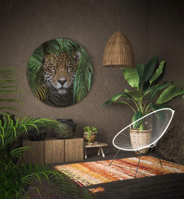 Glasbild Jungle – rund im Wohnzimmer