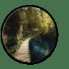 Glasbild Path – rund