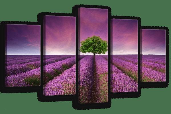 Leinwandbild Lavendel – Mehrteiler Ansicht schräg