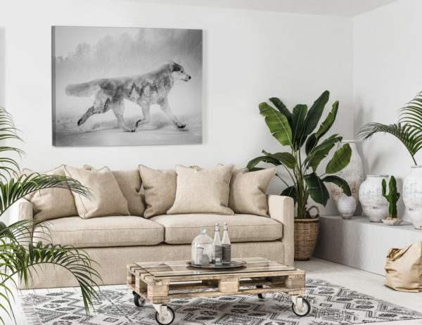 Leinwandbild Wolf im Wohnzimmer