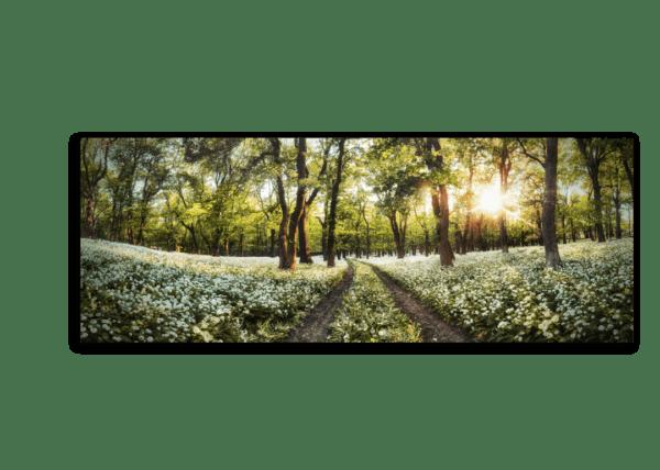 Leinwandbild Spring – Panorama