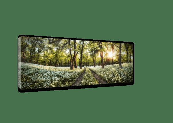 Leinwandbild Spring – Panorama Ansicht schräg