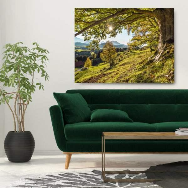Glasbild Green Tree im Wohnzimmer