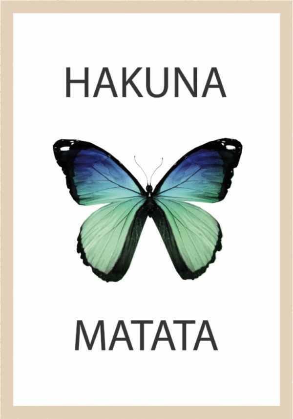 Rahmenbild Schmetterling