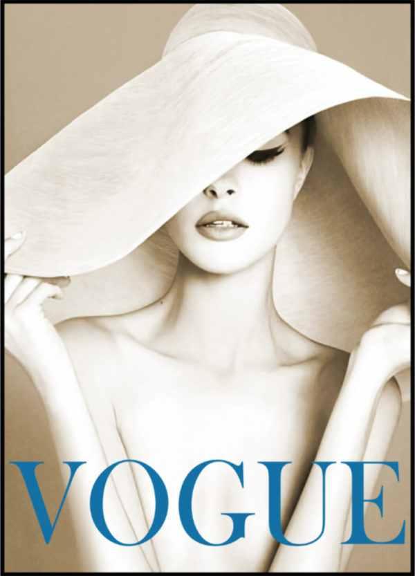 Gerahmtes Bild Vogue 7